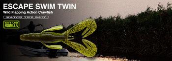 escape_swim_twin.jpg